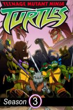Teenage Mutant Ninja Turtles Season 3 / Teenage Mutant Ninja Turtles Сезон 3 (2004)