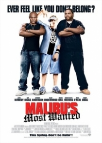 Malibu's Most Wanted / Страшилището на Малибу (2003)