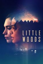 Little Woods / Литъл Уудс (2018)